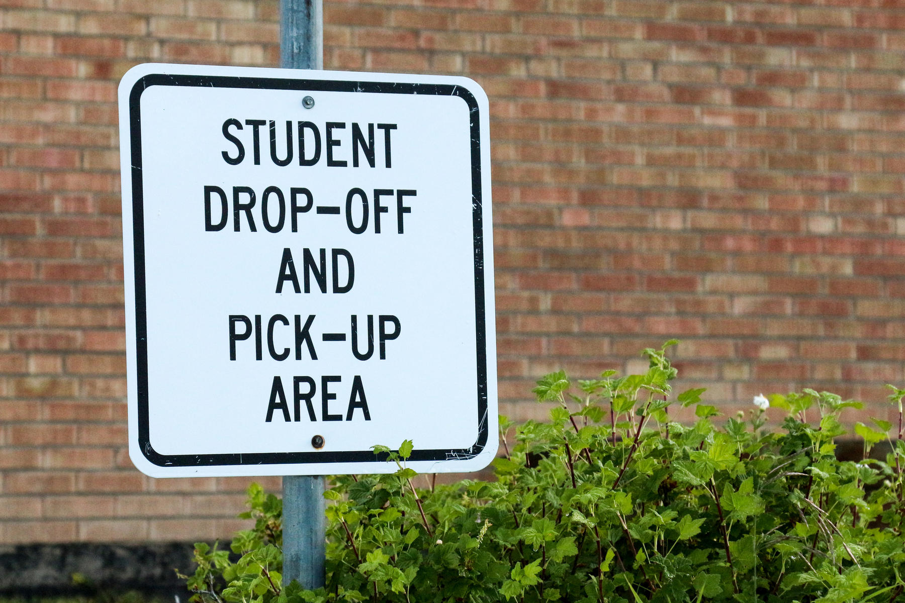School dropoff and pickup sign