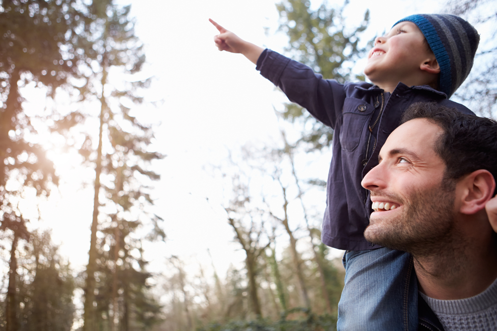 Dad and toddler son pointing in the woods