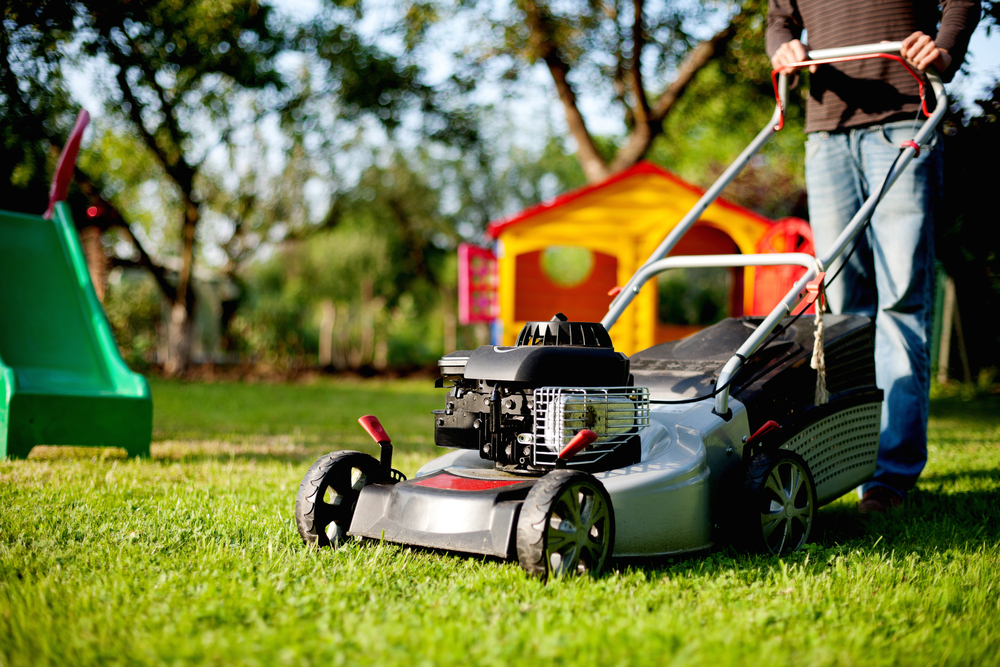 Man Using Lawn Mower
