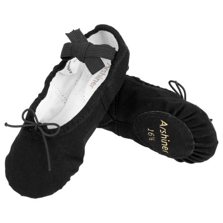 NW Ballet Slippers