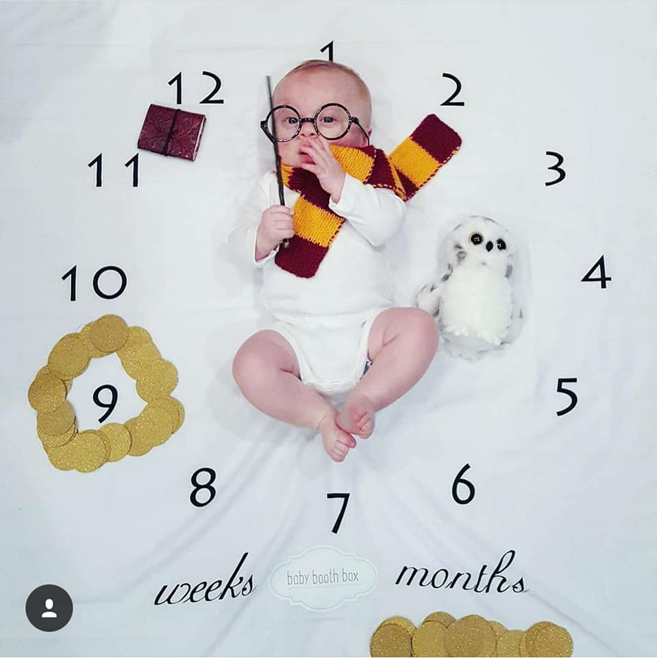 Harry Potter quints
