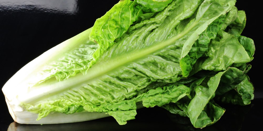 CDC recommending a blanket ban on romaine lettuce_Still