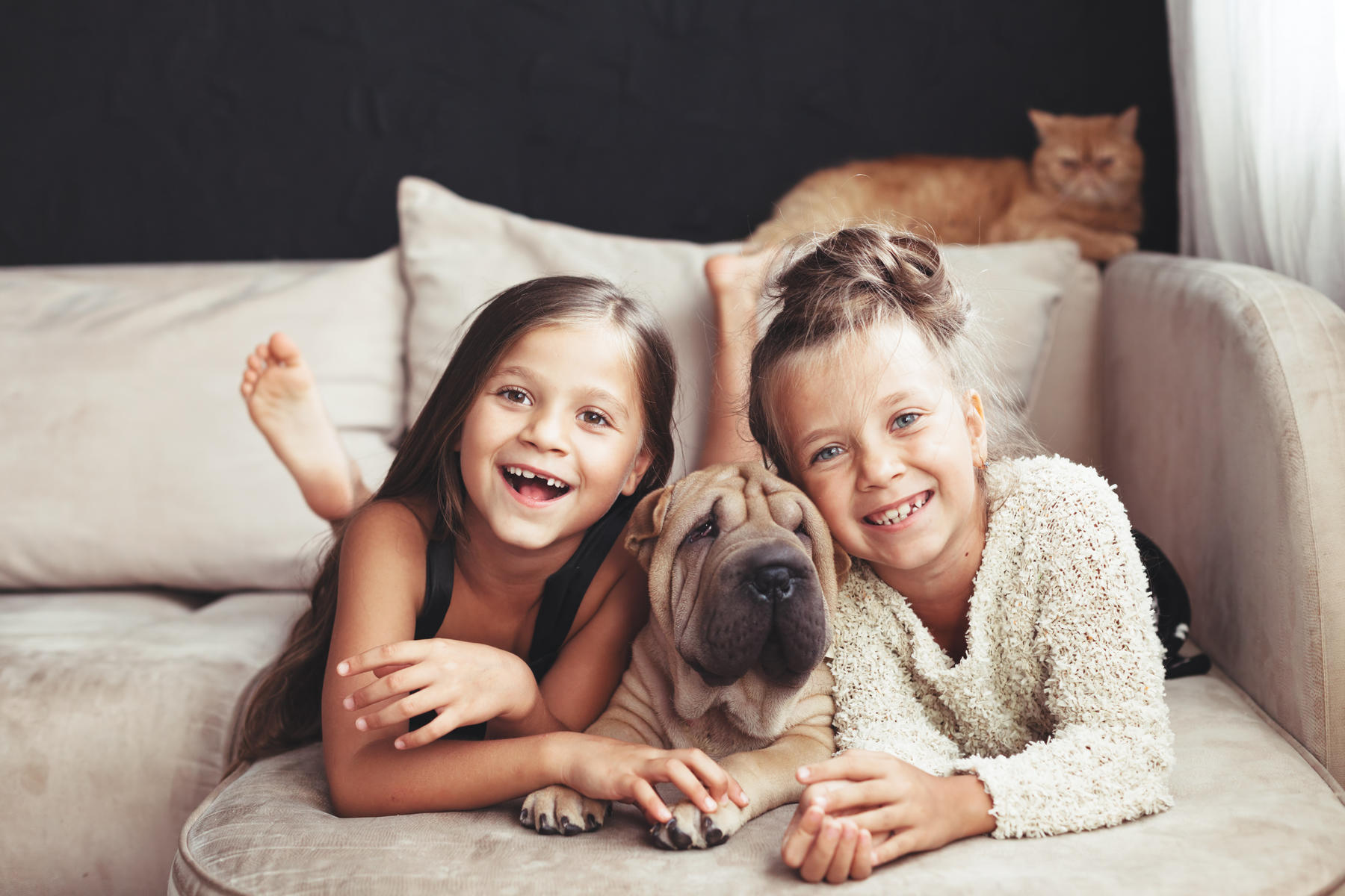 Two Girls with Chinese Shar Pei Dog on the Sofa and Ginger Cat