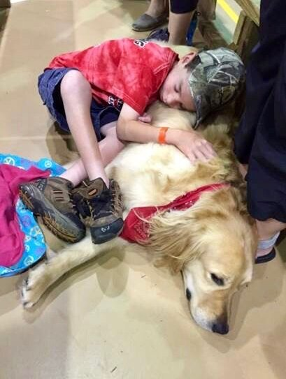 These Children's Hospital Therapy Dogs Are Everything We Need In The