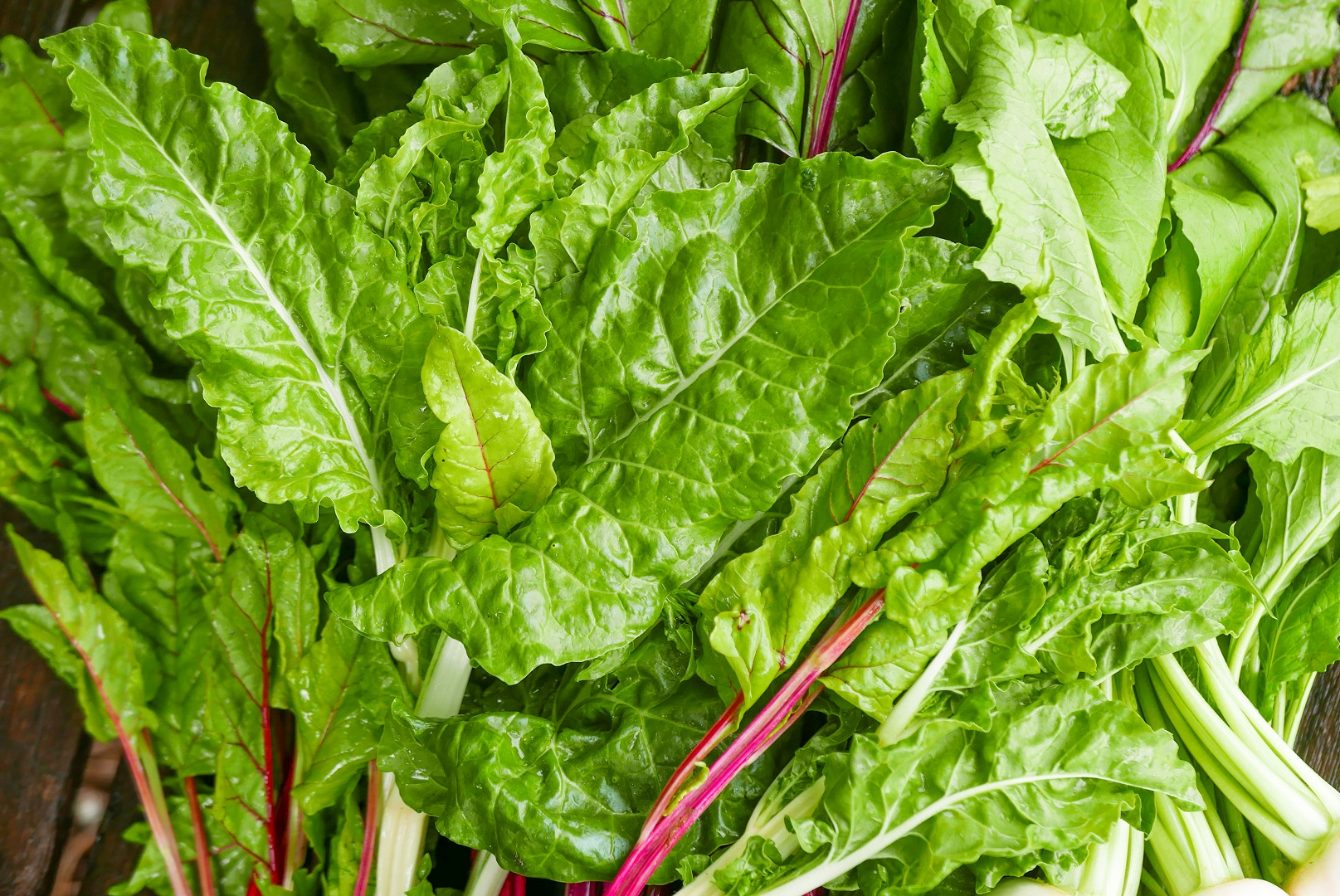 Leafy Greens Spinach Kale Lettuce