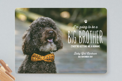 Dog Pregnancy Announcement Card