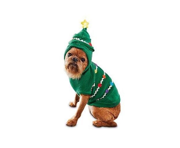Pets Ugly Christmas Sweater 5