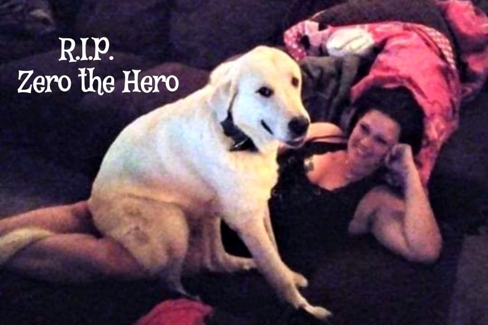 Laura Martinez and Dog Zero the Hero Great Pyrenees