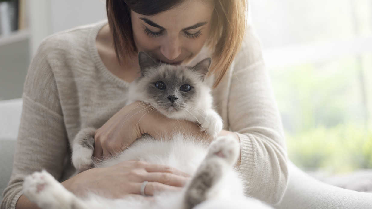 Woman Holding Fluffy Cat