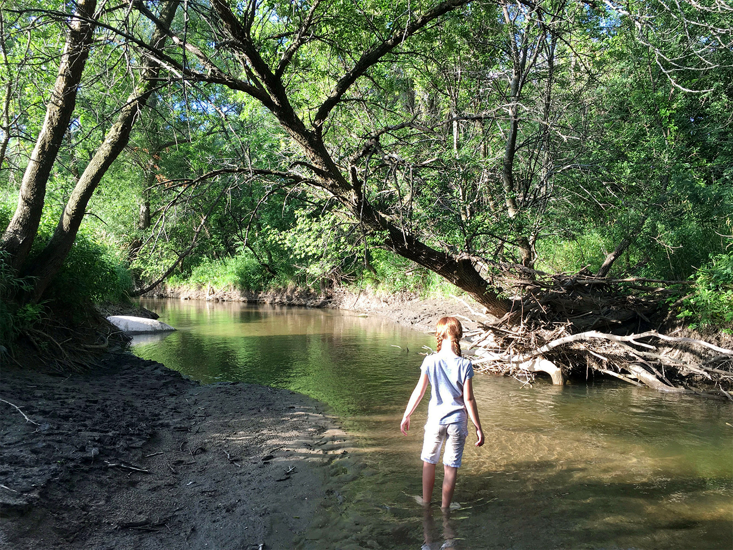 girl with pigtails standing in plum creek