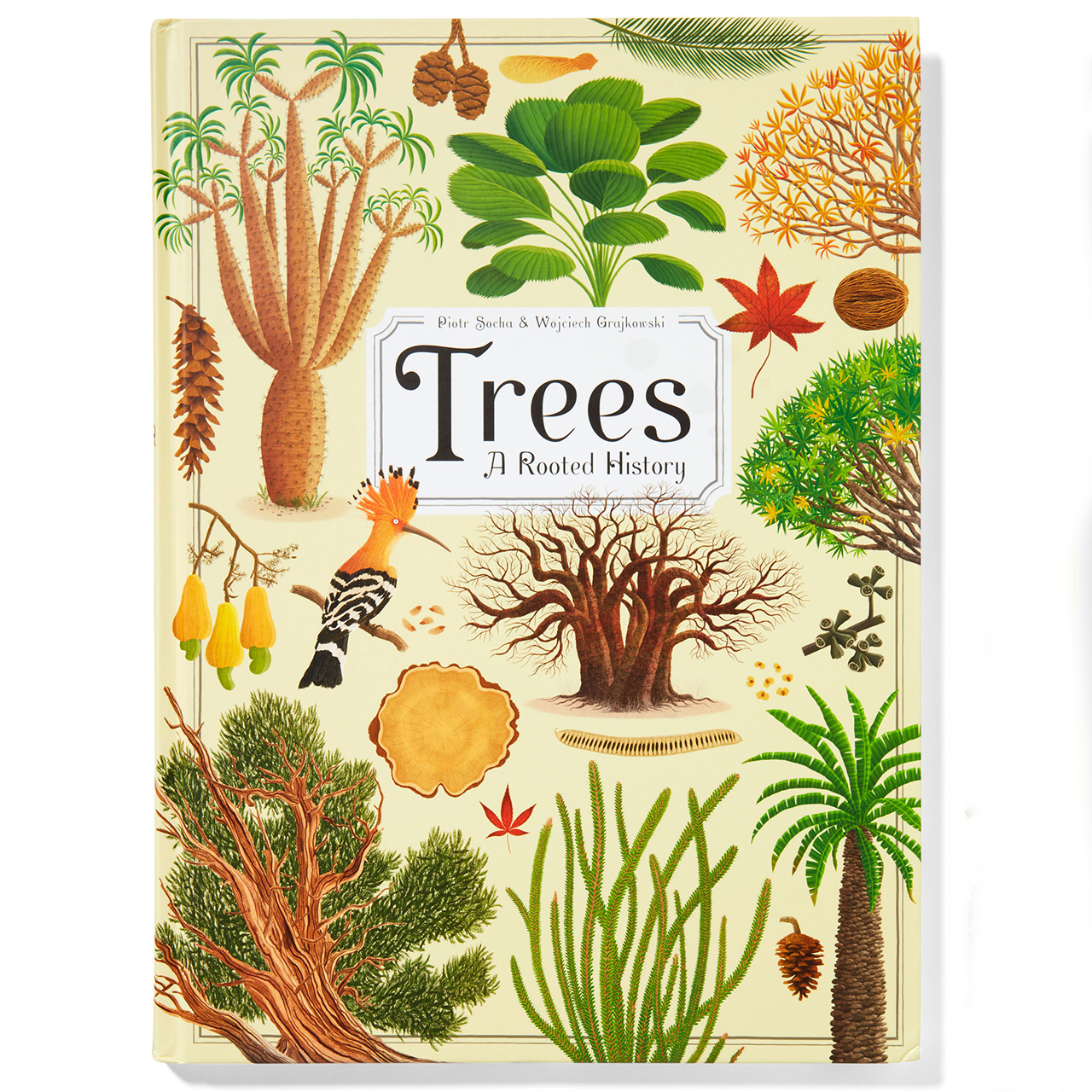 Trees A Rooted History Book