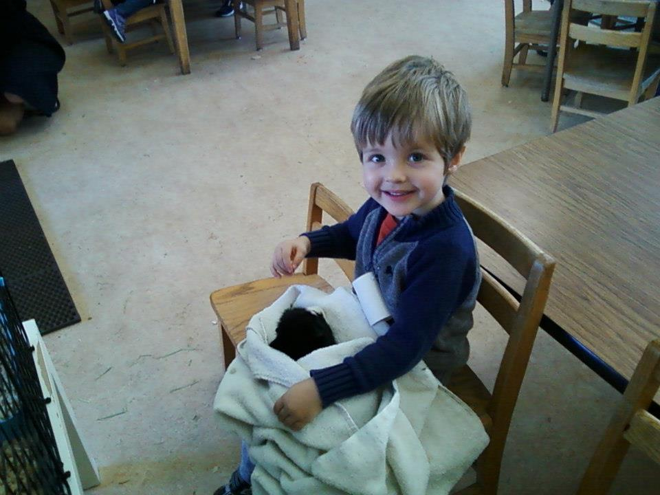 Stephanie's oldest son, Henry, with Peeky the Guinea Pig.