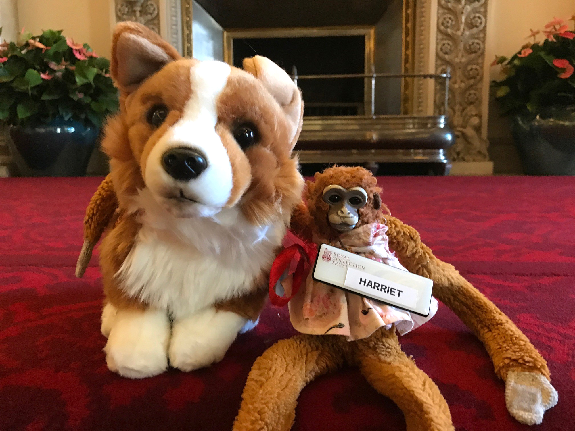Harriet the Monkey Toy from Adelaide Hills kindergarden lost in Buckingham Palace 1