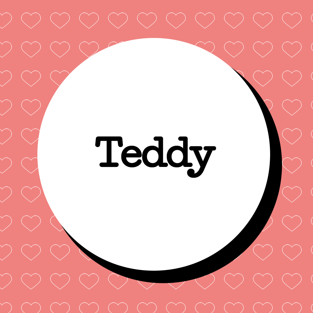 Teddy Baby Name