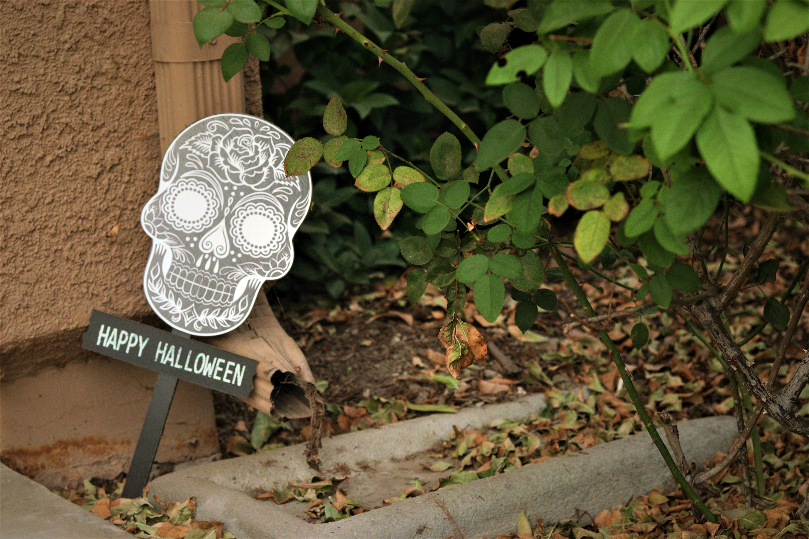 sugar skull halloween sign