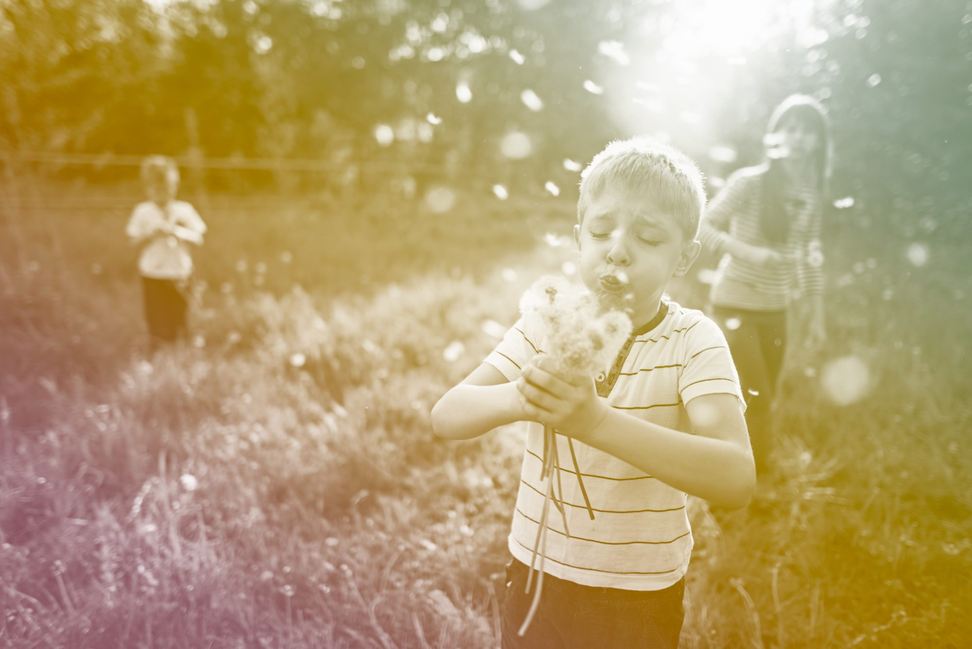 kids blowing dandelions in field