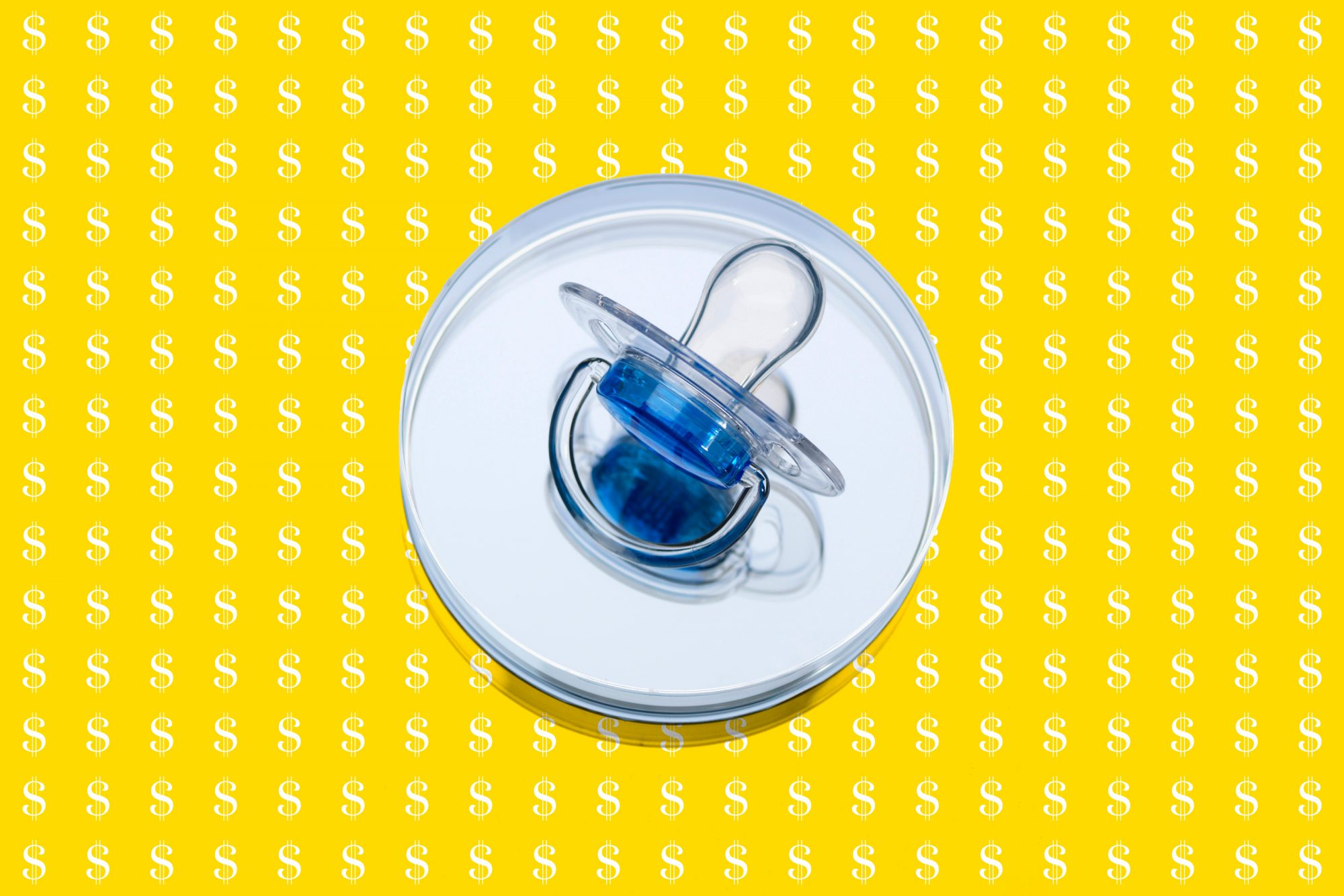 blue baby pacifier on top of petri dish on top of $