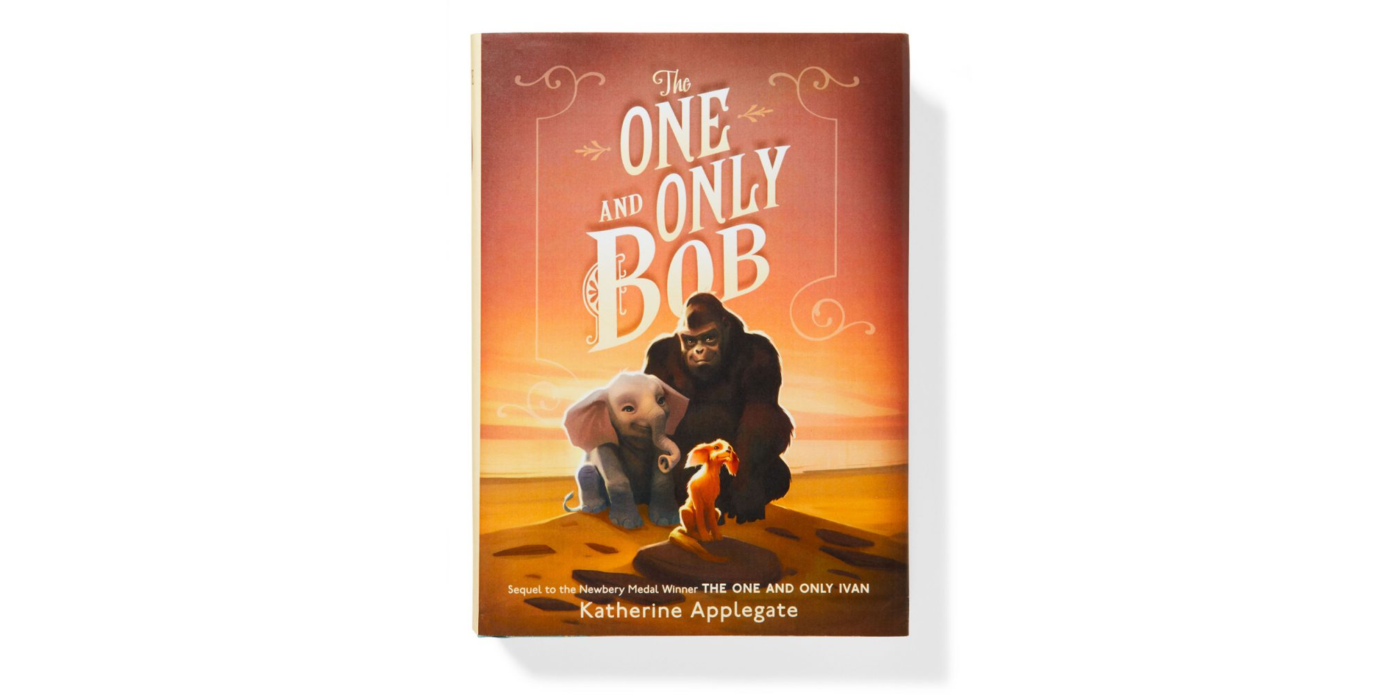 The One and Only Bob book cover