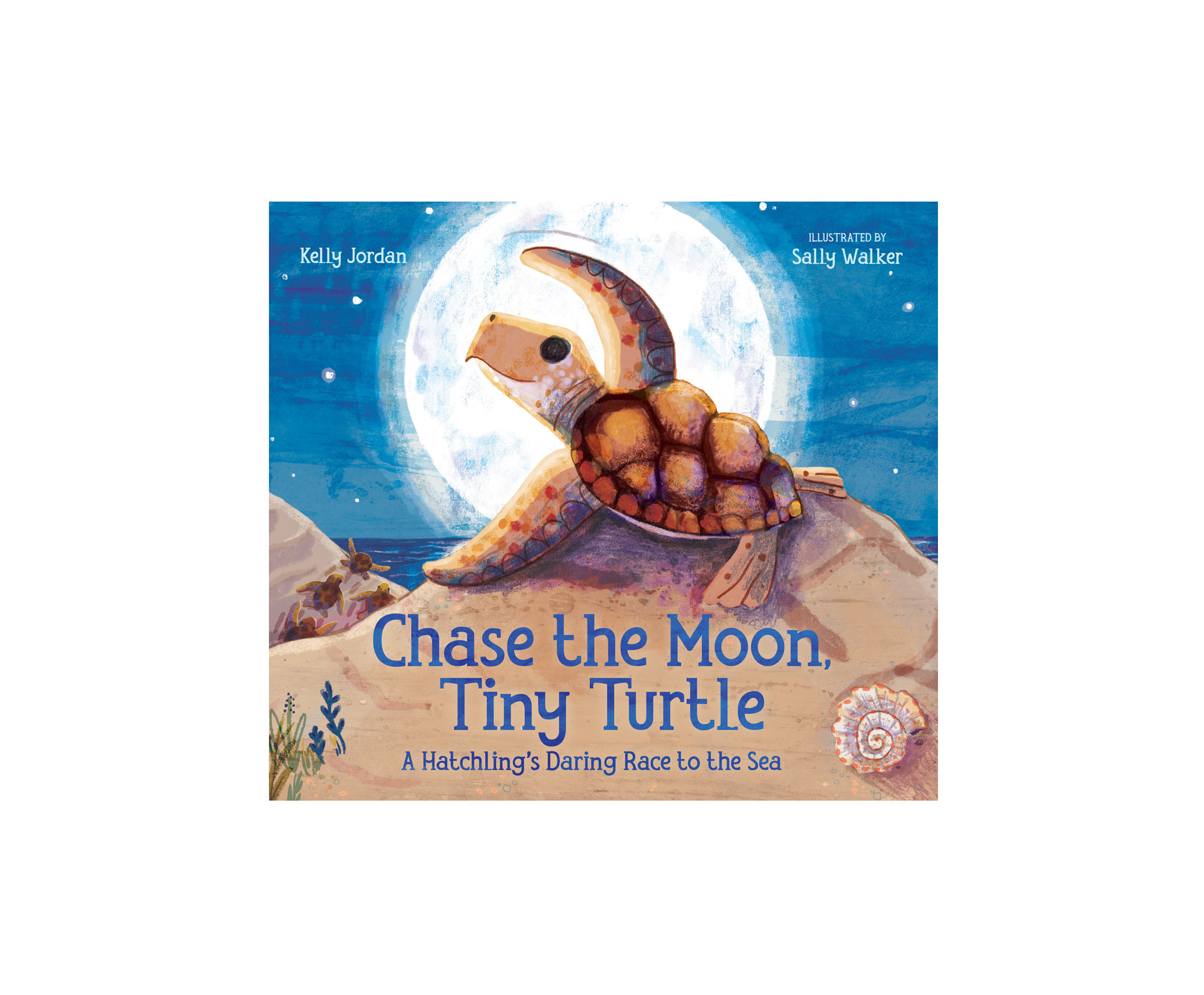 Chase the Moon, Tiny Turtle book cover