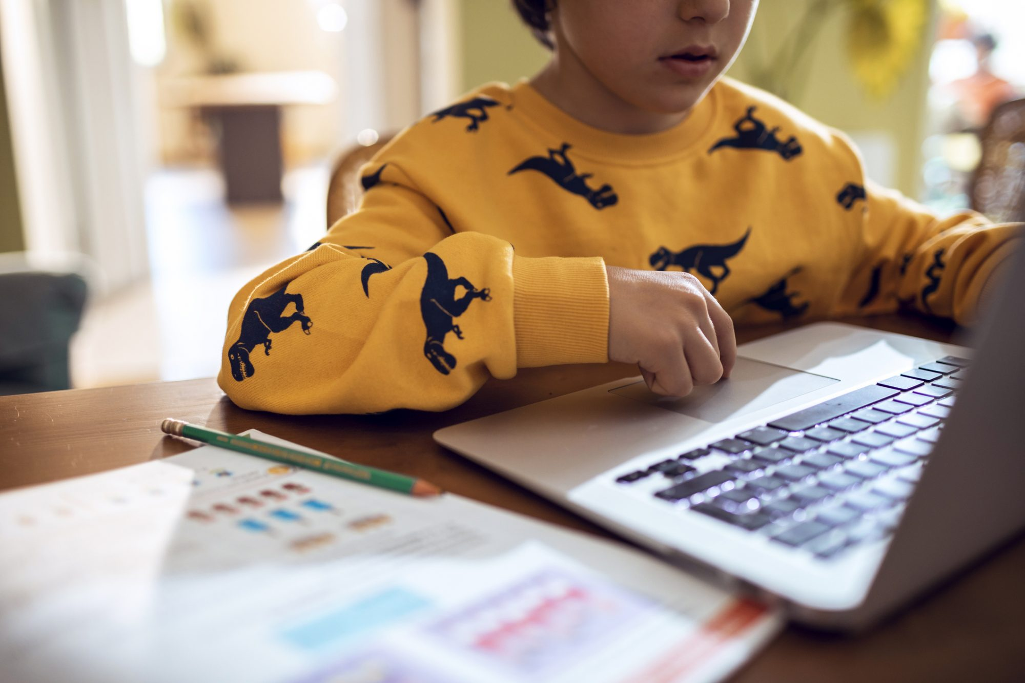 An image of a child doing online learning.