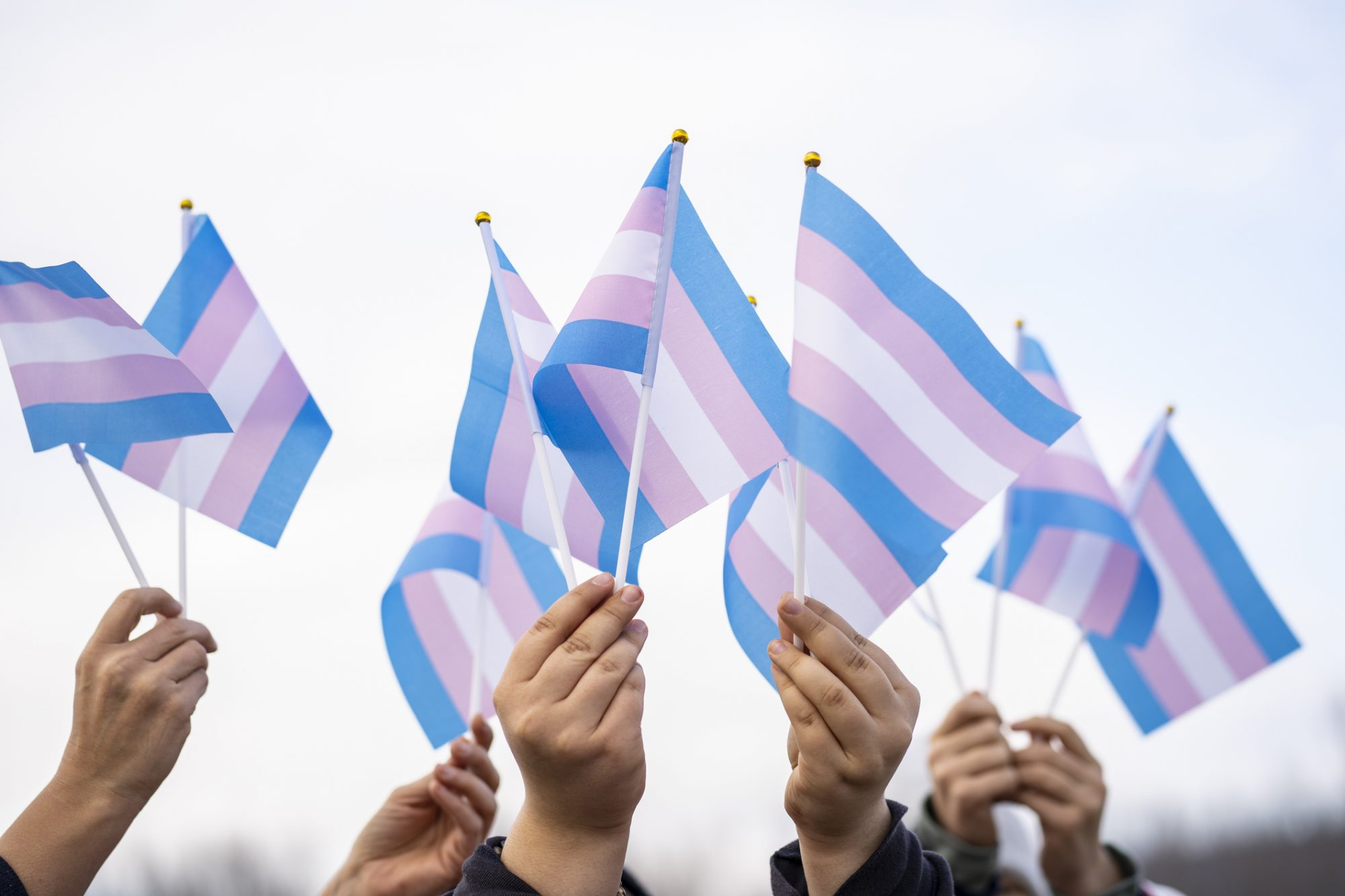 An image of people holding trans rights flags.