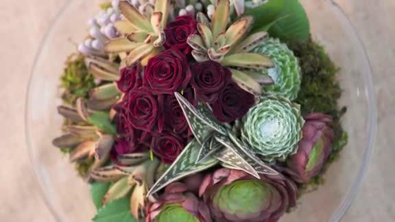 Video: How to create a succulent arrangement