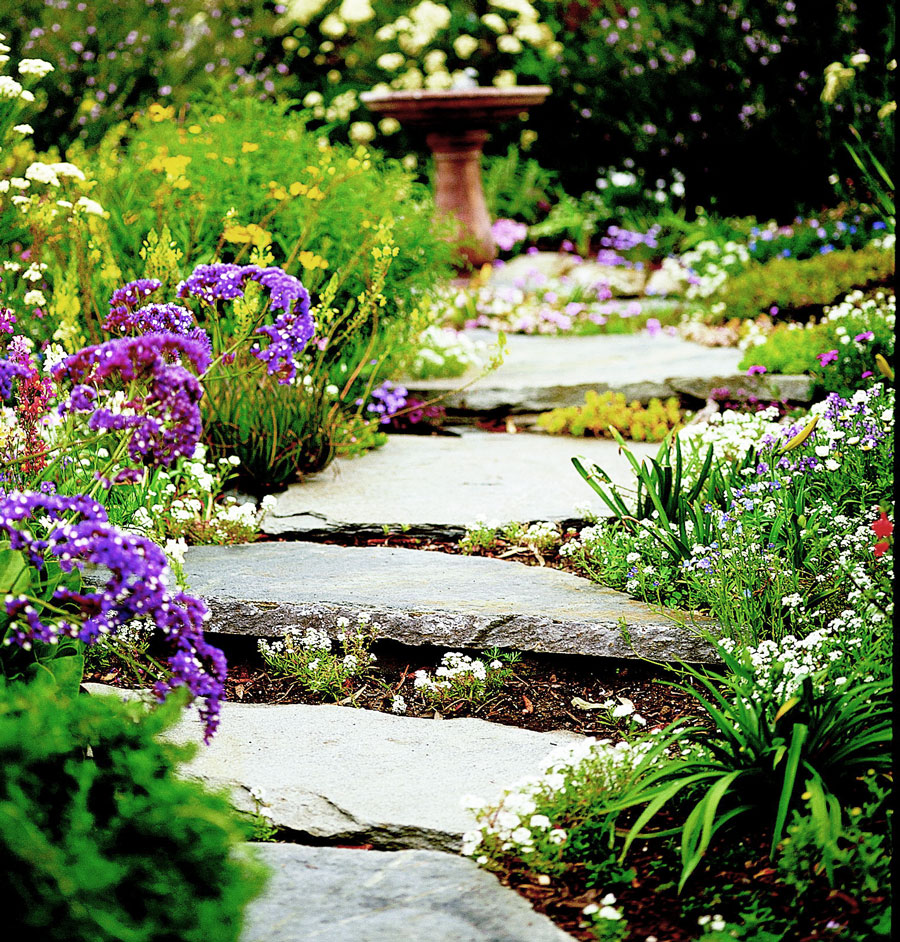 Stones and mulch: a good blend