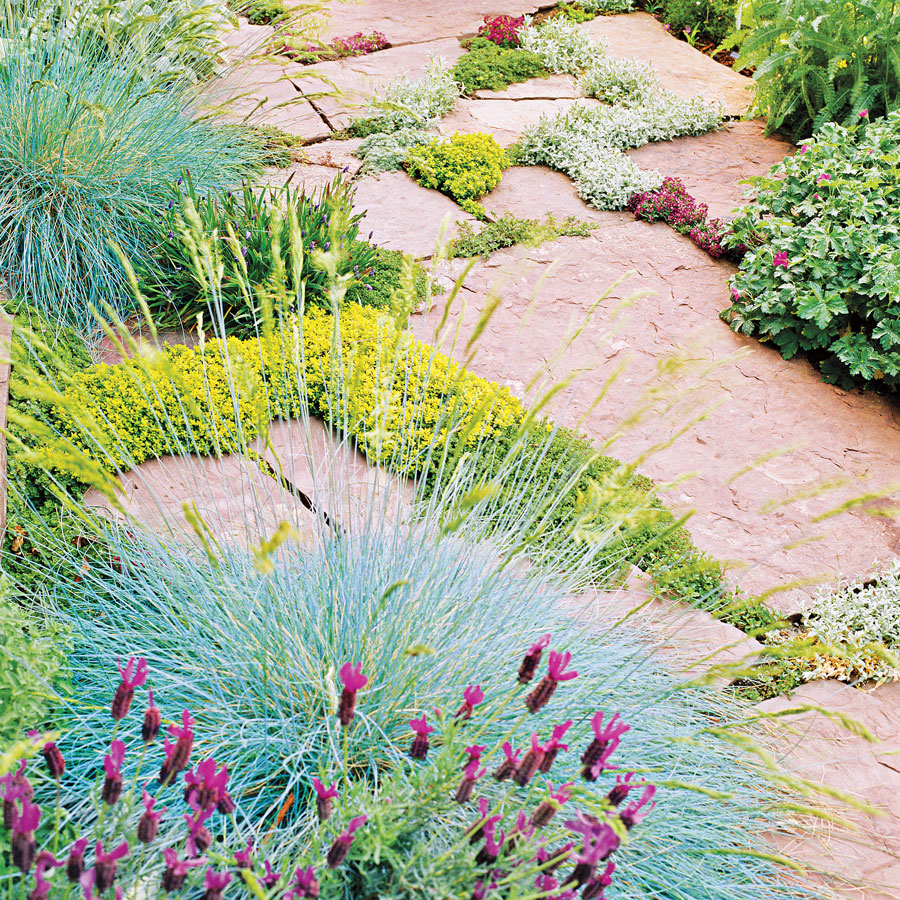 More ideas for your garden path