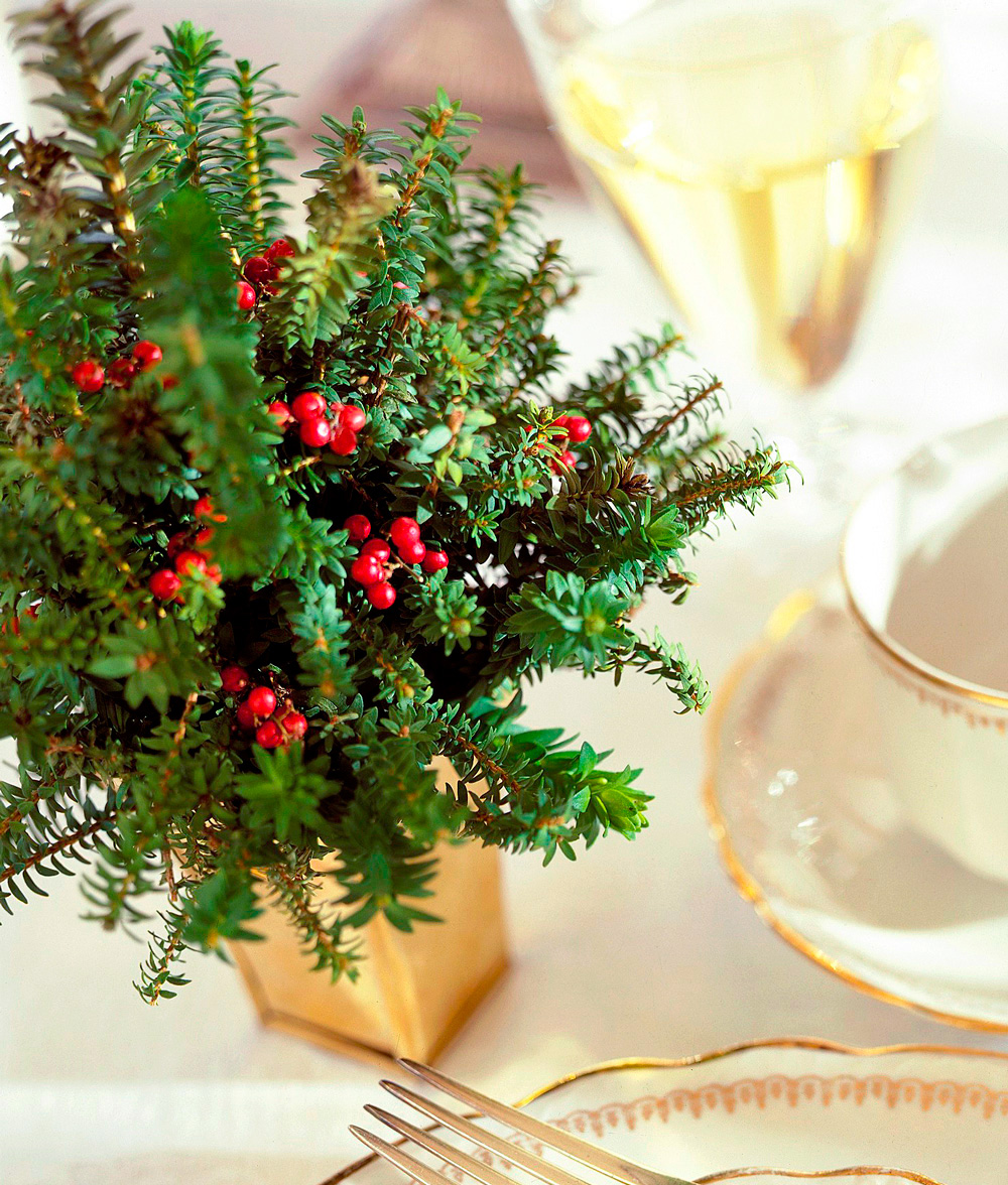 Place-setting tree