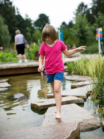 Illinois: Morton Arboretum