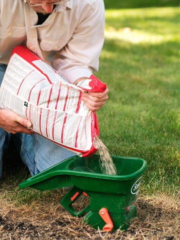 Lawns: Perk up warm-season grasses