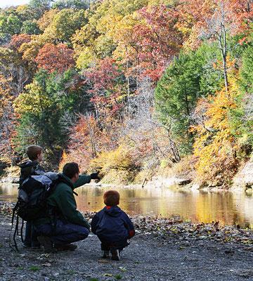 Indiana: Turkey Run State Park