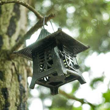 Tour a Japanese garden