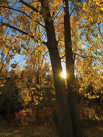 Nebraska: Ponca State Park