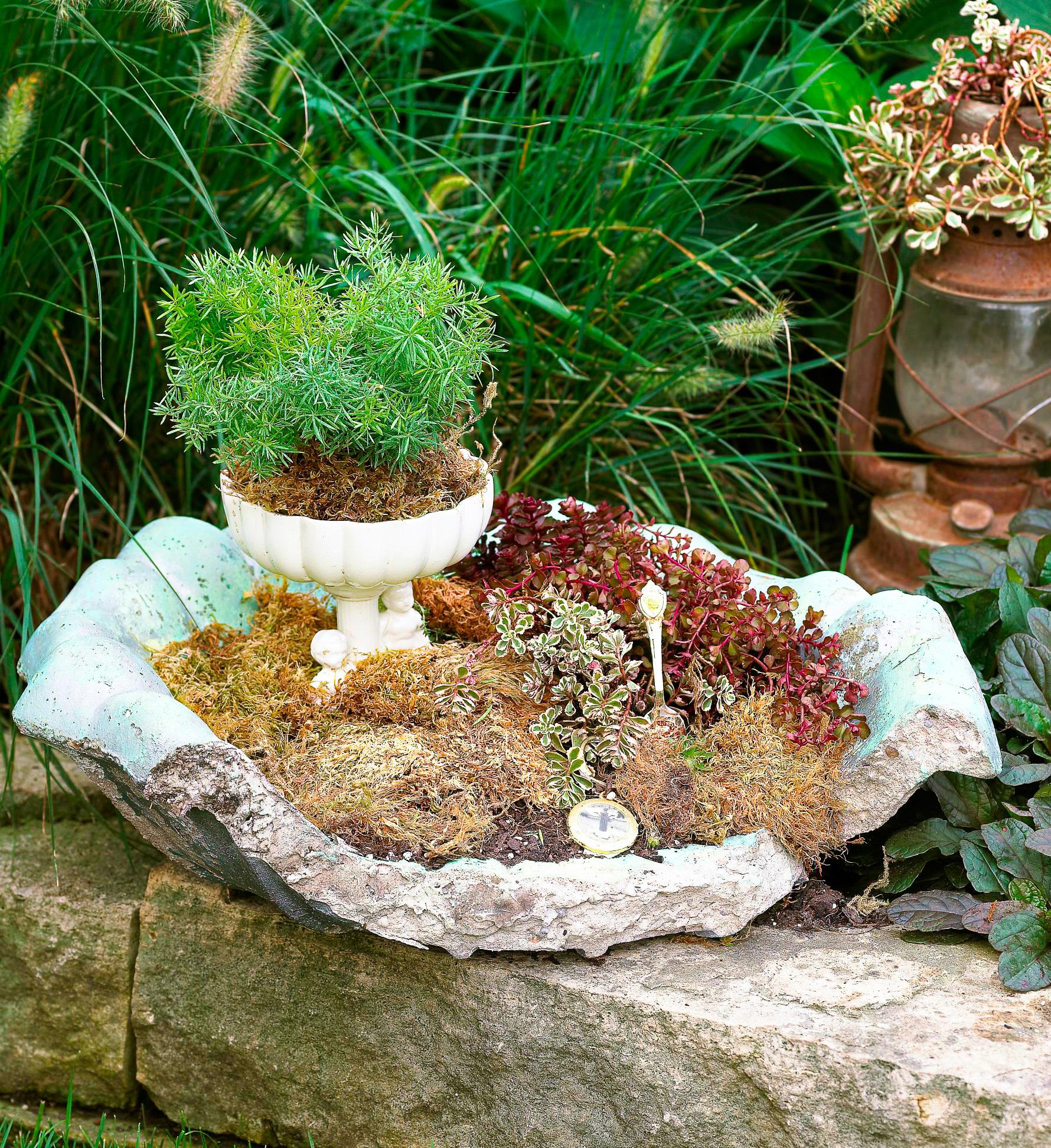 Birdbath planter