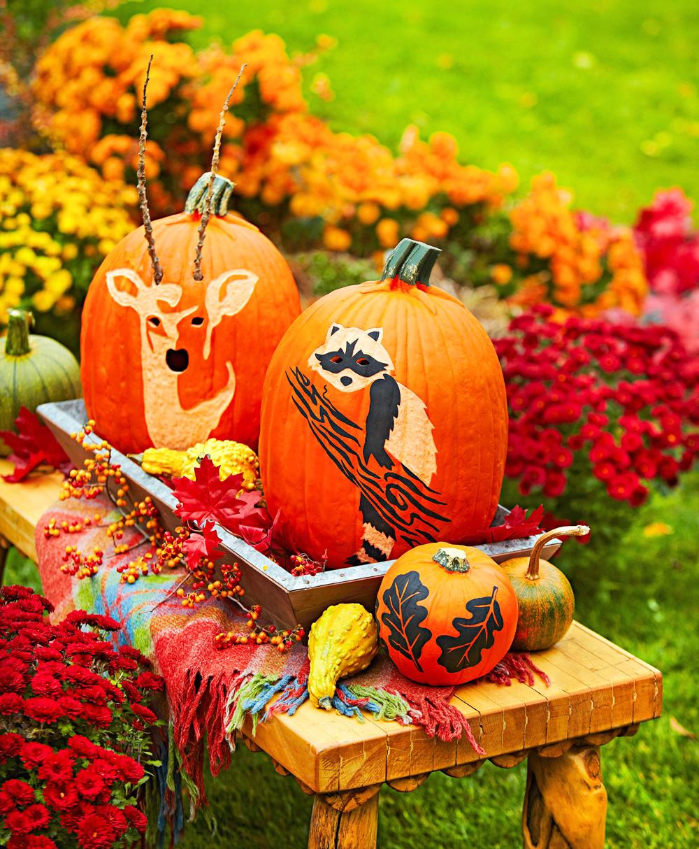 Woodland scene pumpkins