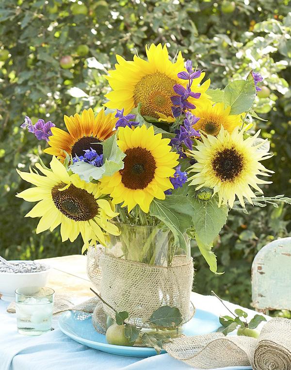 Cut-flower beauty