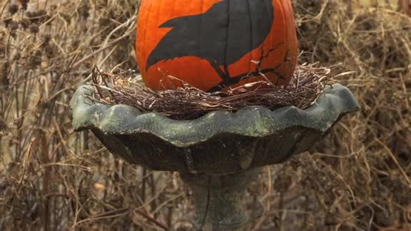 One-Minute Inspiration: No-Carve Pumpkins