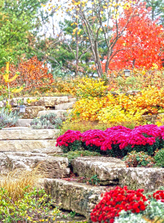 7 Fall Garden Bargain Tips Midwest Living
