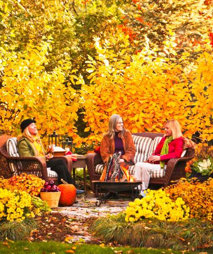 More fall gardening ideas