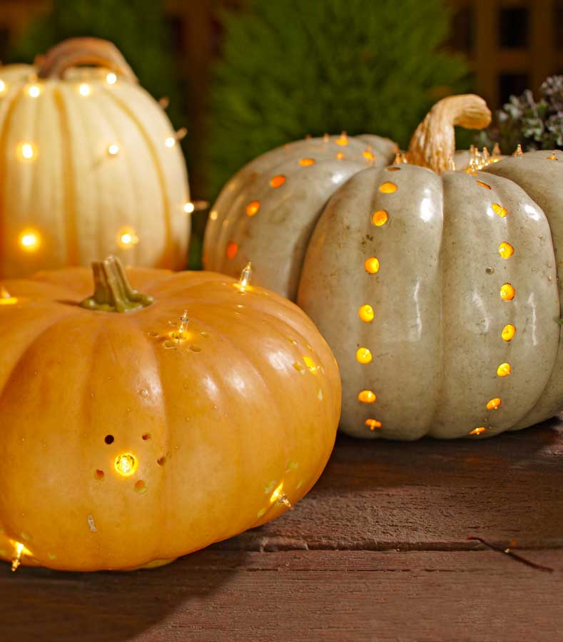 Twinkly pumpkins