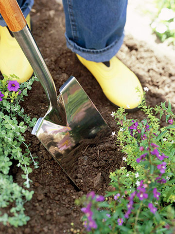 Cleanup and prep: Dig, fertilize and mulch