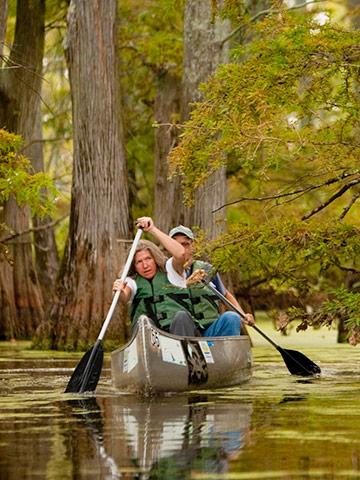 Illinois: Cache River State Natural Area