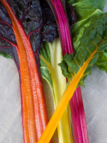 A sampler of old favorites: 'Five Color Silverbeet' Swiss Chard