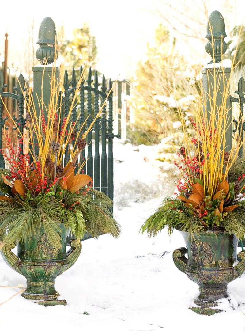 Warm, earthy colors