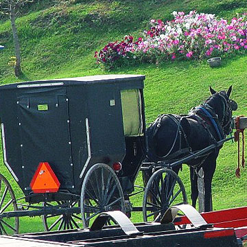 Tours of Amish country