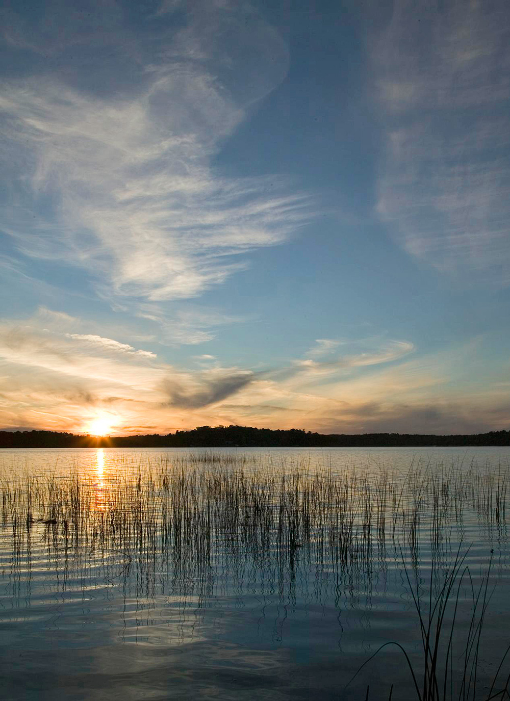 Playing in and out of the water in Brainerd, Minnesota