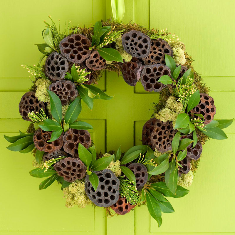 Lotus pod wreath