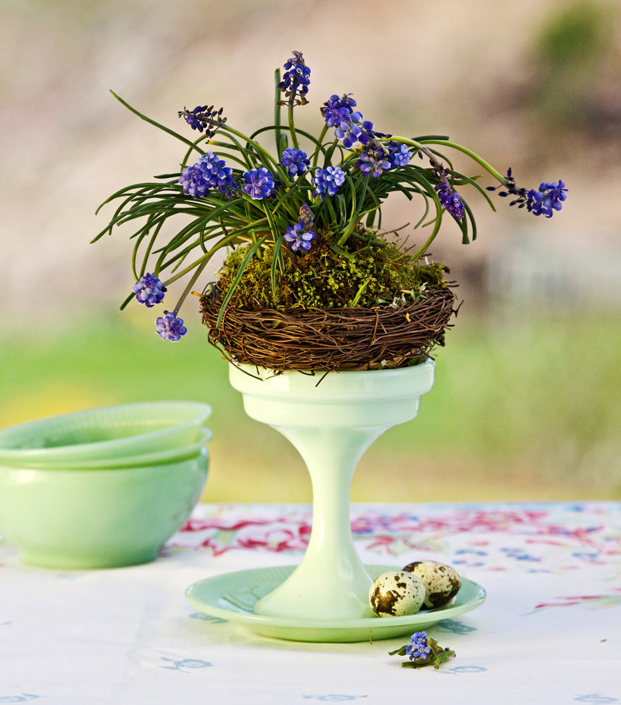 Hyacinth nest centerpiece