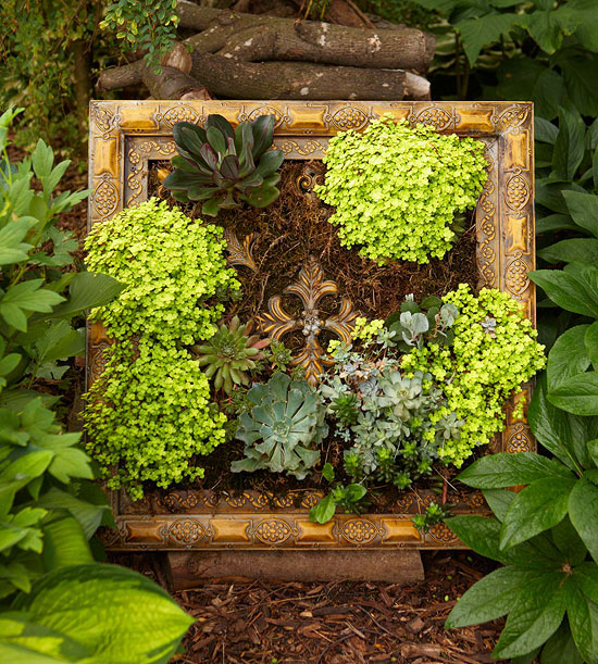 Garden tour: Living wall